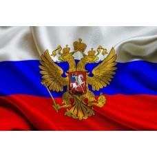 День Конституции РФ